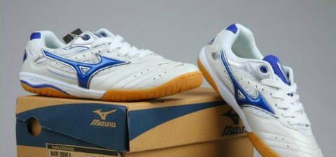 Table Tennis Shoe Reviews