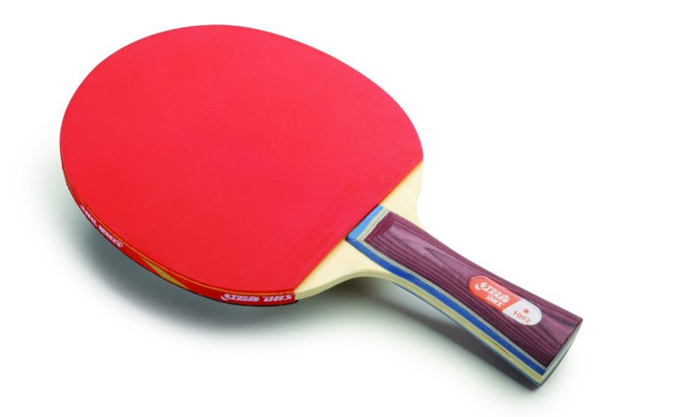 DHS A1002 Table Tennis Racket Review