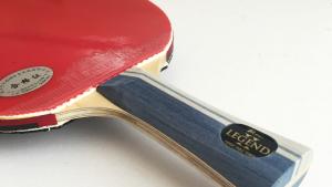 Palio Legend 2 Table Tennis Racket Review Image