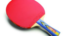 DHS A3002 Table Tennis Racket Review